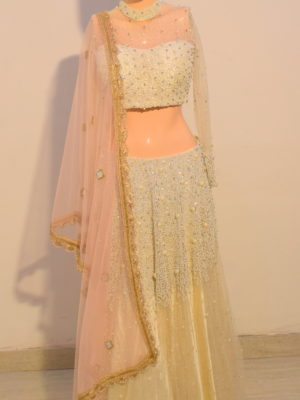 Celebrity look heavily embroidered Lehenga with Top